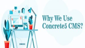 Concrete5 Development Company